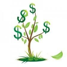 copac cu bani